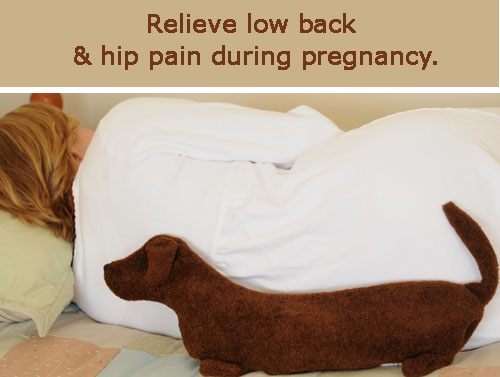 Dog Hip Pain Remedy Home