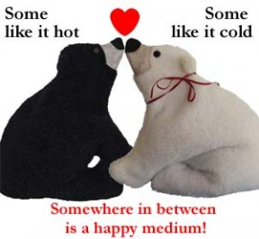 Polar Bear and Black Bear Heating Pads almost kissing with a heart and text - Some like it hot, Some like it cold, Somewhere in between is a happy medium