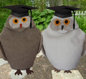 Maine Warmers' Snowy Owl and Tan Owl wearing graduation hats